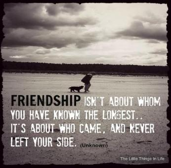 Quotes About Mending Friendships 02