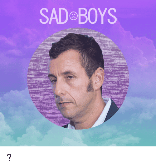 Sadboys Meme Funny Image Photo Joke 13