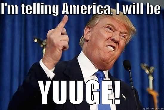 Trump Meme Funny Image Photo Joke 06