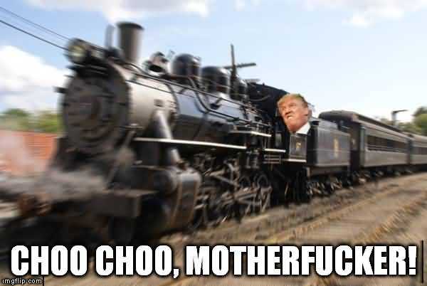 15 Top Trump Train Meme Images Jokes and Pictures   QuotesBae