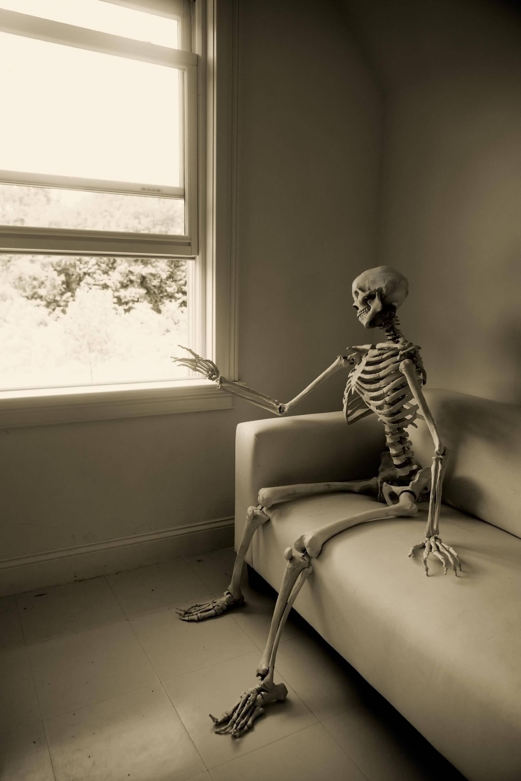 Waiting Skeleton Meme Funny Image Photo Joke 14