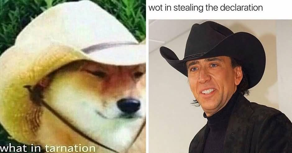 What In Tarnation Meme Funny Image Photo Joke 14
