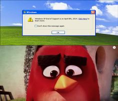 Windows Xp Meme Image Joke 01
