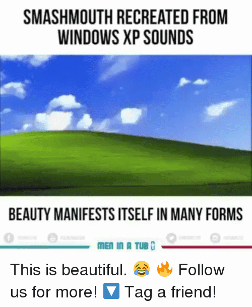 Windows Xp Meme Image Joke 10