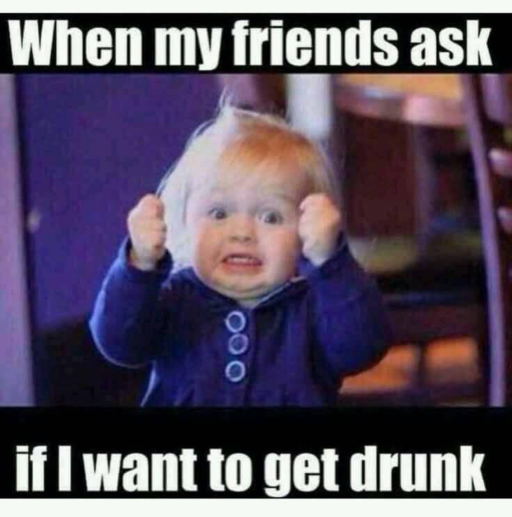 Alcohol Meme Funny Image Photo Joke 04