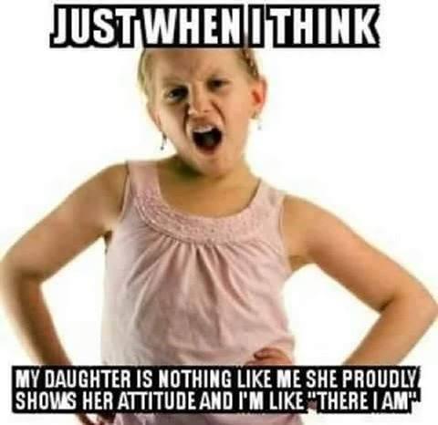 Daughter Meme Funny Image Photo Joke 05