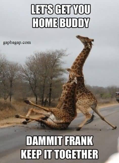 Drunk Meme Funny Image Photo Joke 21