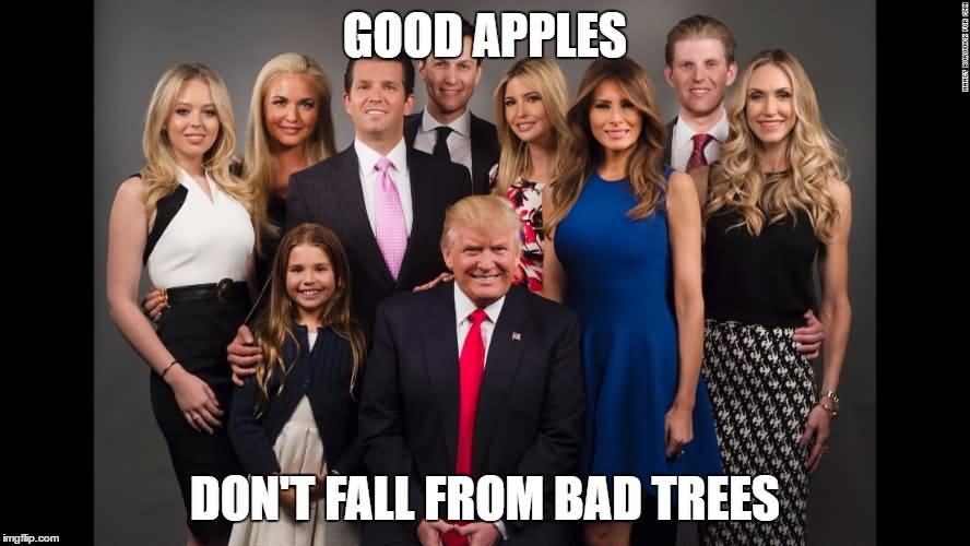 Family Meme Funny Image Photo Joke 18