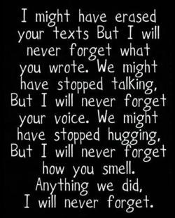 I Will Never Forget You Quotes Death Picture 01
