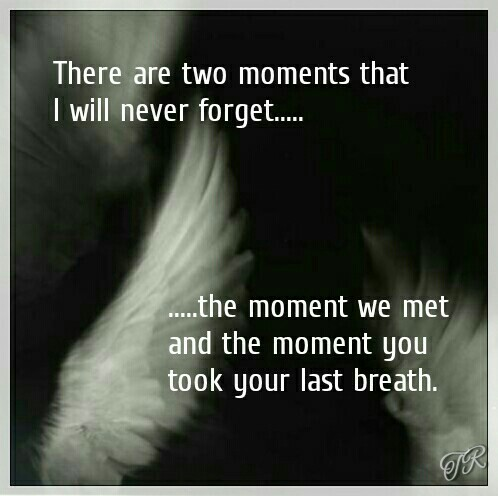 I Will Never Forget You Quotes Death Picture 16