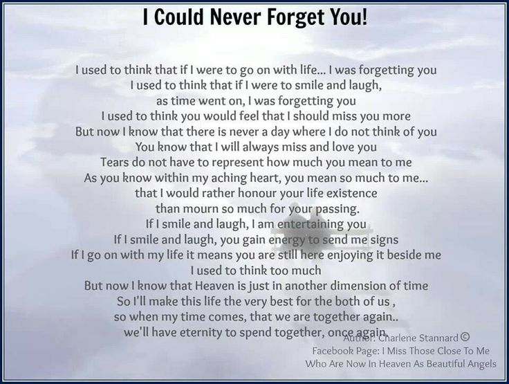 I Will Never Forget You Quotes Death Picture 17