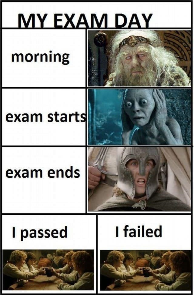 My Exam Day Funny Quotes About Finals Week