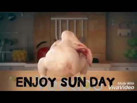 Enjoy Sun Day Funny Sunday Images