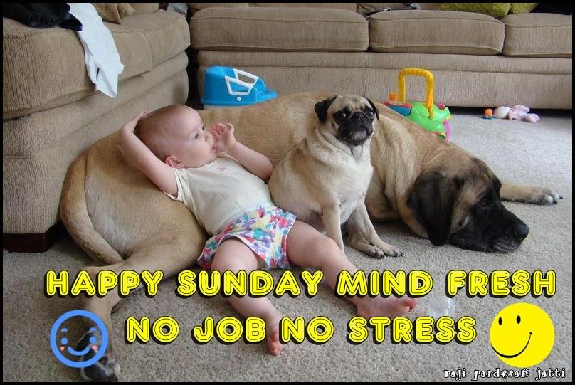 Happy Sunday Mind Fresh No Job