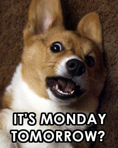 It's Monday Tomorrow