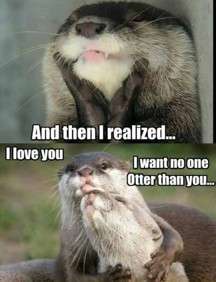 And the i realized i love you i want no one otter than you I Love You Memes Images