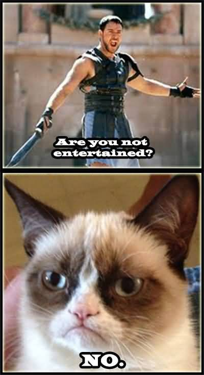 Are you not entertained no Grumpy Cat Memes Pic