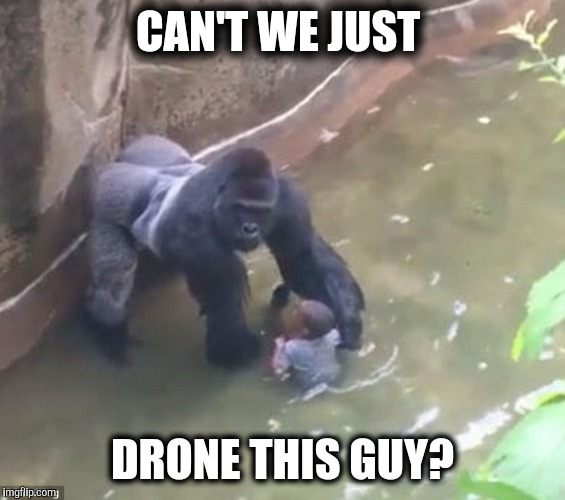 Can't We Just Drone This Guy Harambe Meme