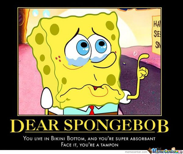 Dear spongebob you live in bikini bottom and you're super absorbant face it Funny Spongebob Memes Images