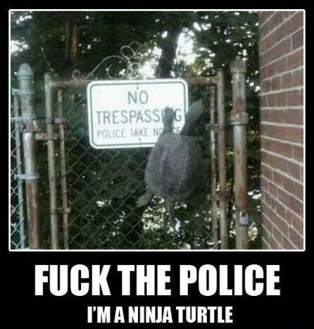 Fuck The Police I Am Ninja Turtle Funny Ninja Memes
