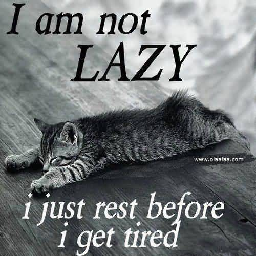 Funny Lazy Memes I Am Not Lazy I Just Rest Before I Get Tired