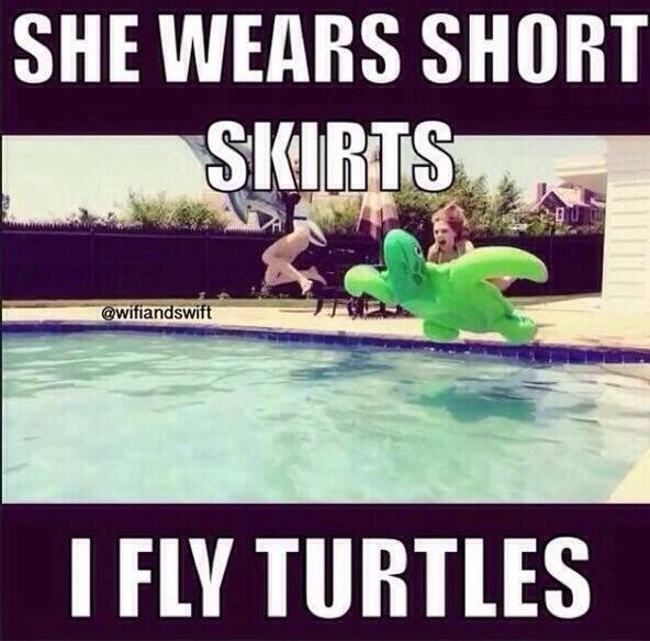 Funny Ninja Memes She Wears Short Skirts I Fly Turtles Image