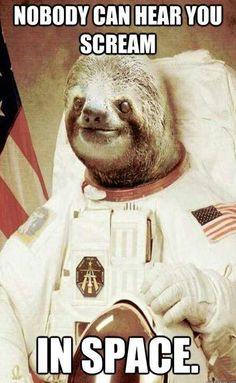 Funny Sloth Rape Memes Nobody can hear you scream in space Images