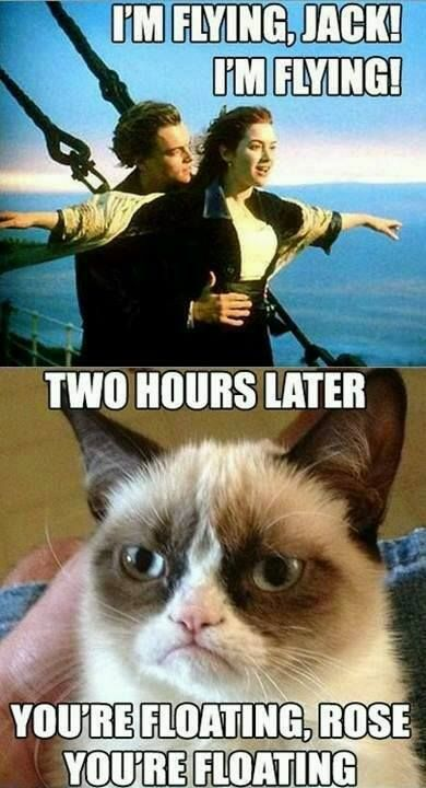 Grumpy Cat Meme Im flying jack im flying two hours later yoou're floating rose youre floating