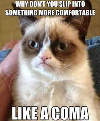 Grumpy Cat Memes Why dont you slip into something more comfortable like a coma Graphic