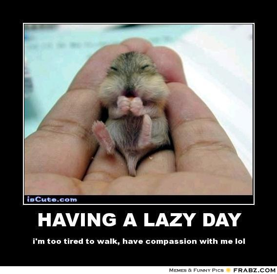 Having A Lazy Day Im Too Tired To Walk Have Compassion With Me Lol Funny Lazy Memes
