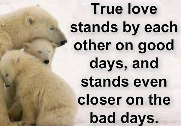I Love You Memes True love stands by each other on good days Graphics