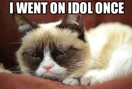 I Went On Idol Once Grumpy Cat Meme