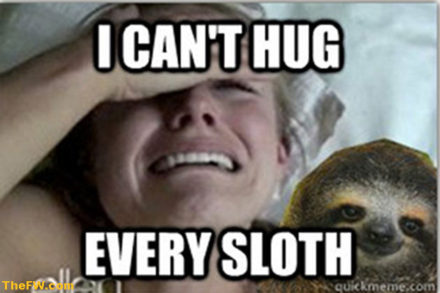 I can't hug every sloth Funny Sloth Memes