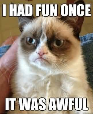 I had fun once it was awful Grumpy Cat Memes Wallpaper