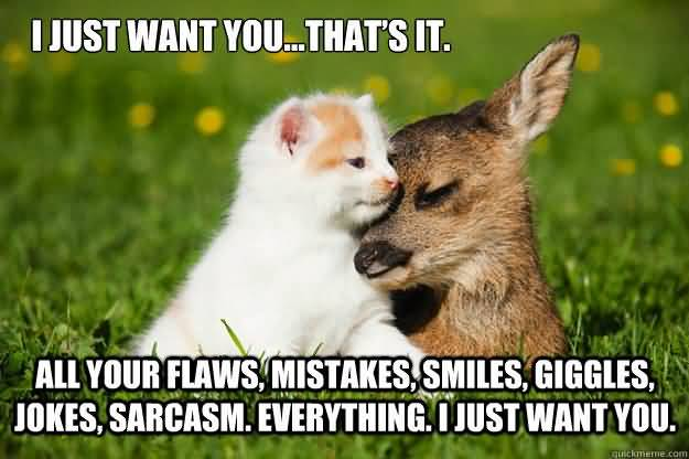 I just want you that's it all your flaws, mistakes, smiles, giggles, jokes, sarcasm I Love You Memes Photos