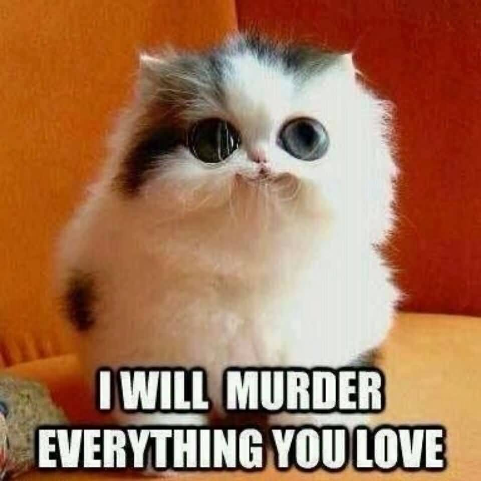 I will murder everything you love I Love You Memes Images