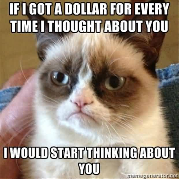 If i got a dollar for every time i thought about you i would start thinking about you Grumpy Cat Memes Graphic