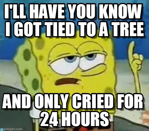 I'll have you know i got tied to a tree and only cried for 24 hours Funny Spongebob Memes