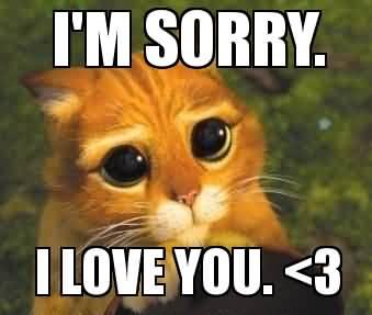 I'm sorry i love you I Love You Memes Images
