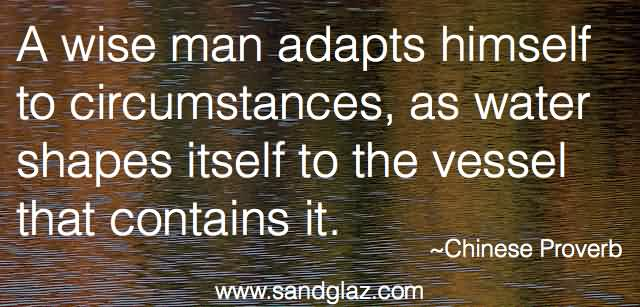 Marvelous Adaptability Quotes