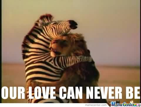 Our love can never be I Love You Memes Photos