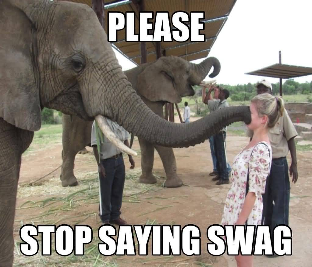 Please stop saying swag I Love You Memes Images