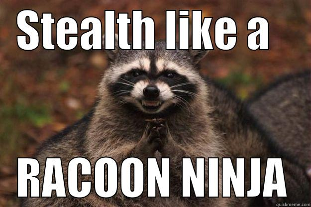 Stealth Like A Racoon Ninja Funny Ninja Memes Graphic