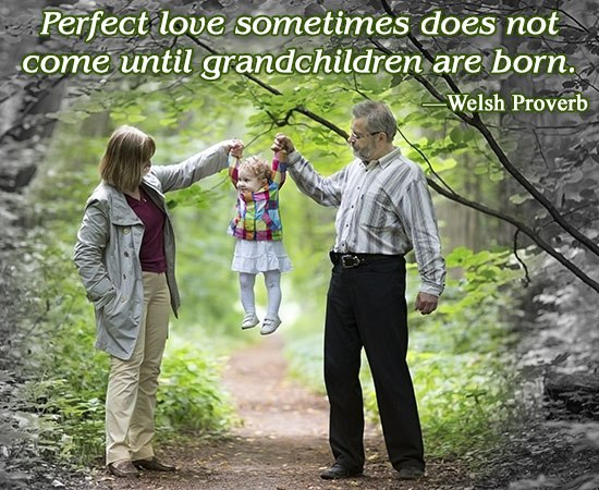 Sweet Sayings About Granddaughters Perfect Love Sometimes Does