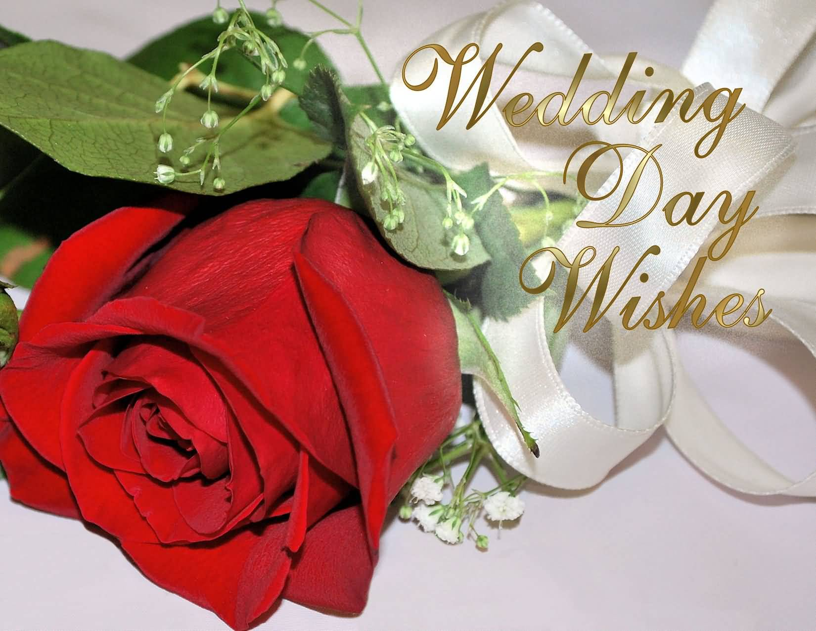 Wedding Wishes Images Free Download Wedding Day Wishes