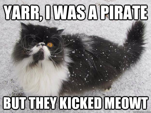Yarr I Was A Pirate But They Kicked Meowt Grumpy Cat Memes Wallpaper