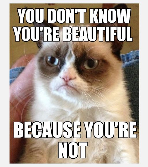 You Dont Know You Are Beautiful Because You Are Not Grumpy Cat Meme