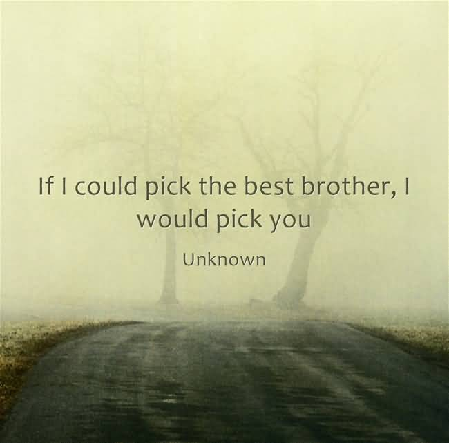 If I Could Pick Brother Quotes