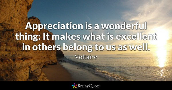 Appreciaction Is A Wonderful Appreciation Quotes