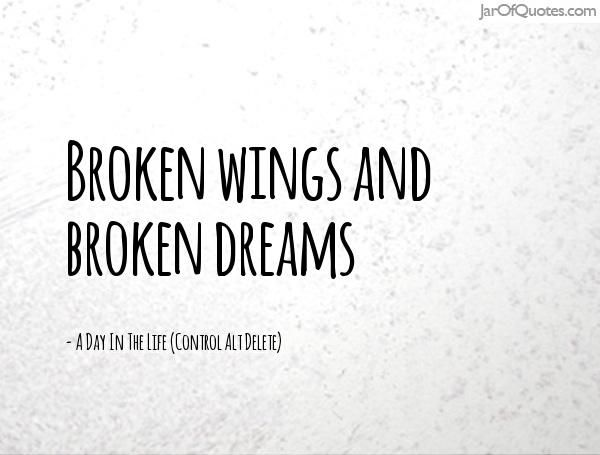 Broken Wings And Broken Broken Life Quotes